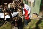 Pohod je priložnost za domačine, da pohodnikom ponudijo pridelke svojih kmetij.